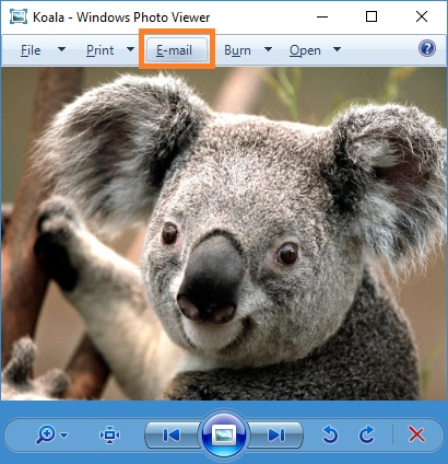 Email from Windows Photo Viewer